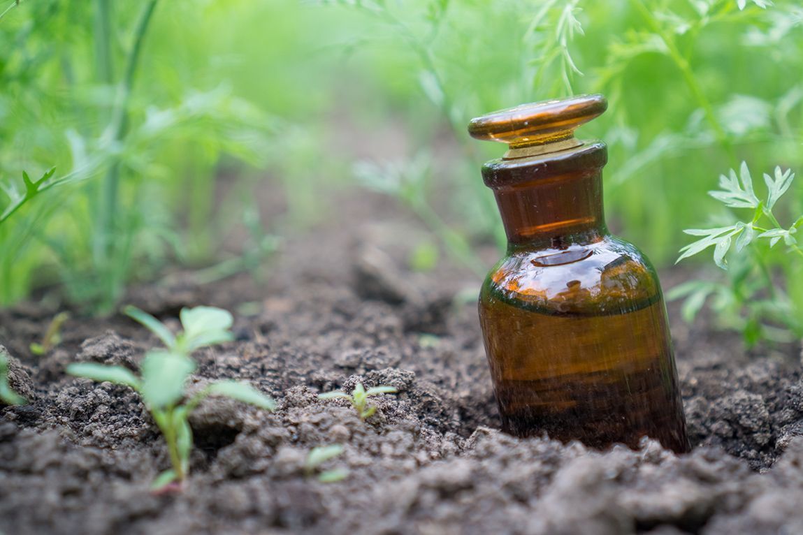 Amber colored bottle in a garden, containing liquid