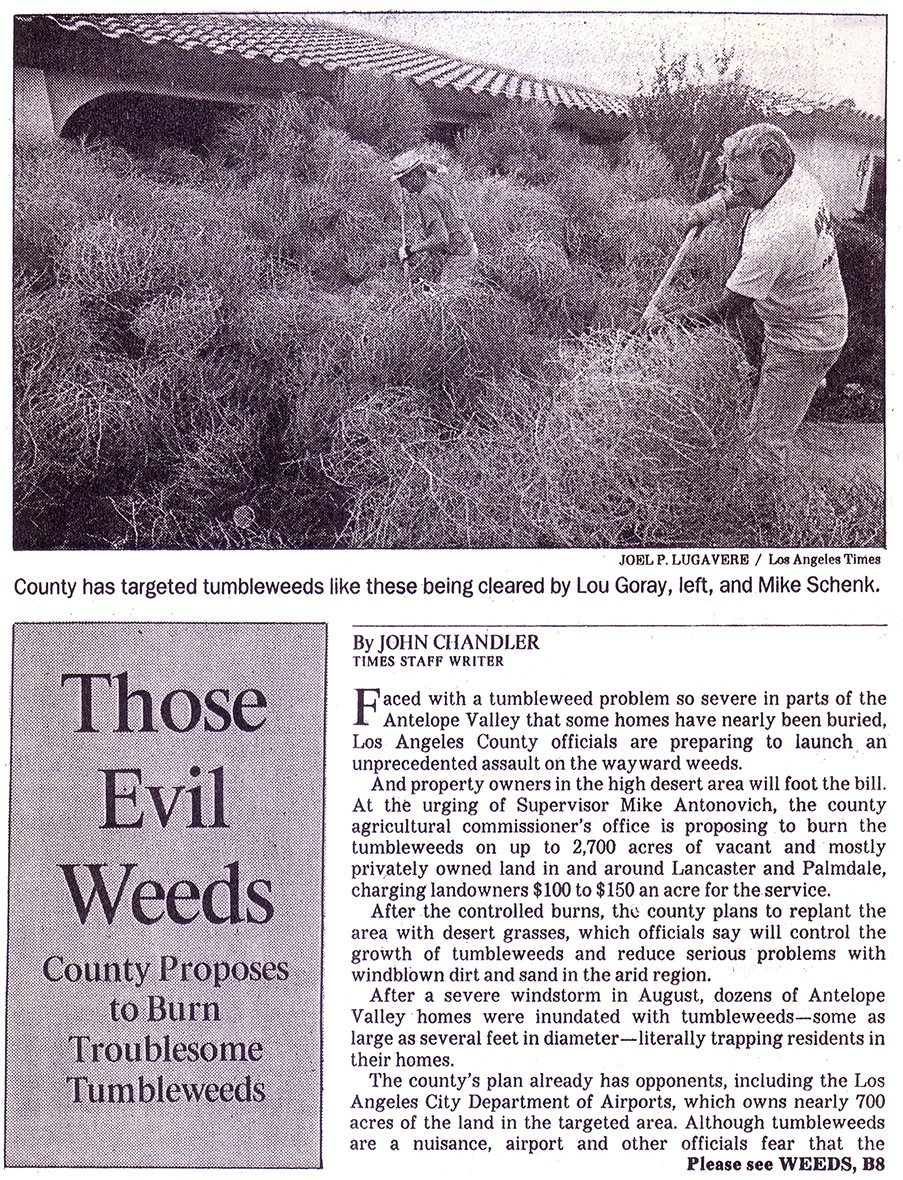 Newspaper. Men raking tall weeds. Headline: Those Evil Weeds