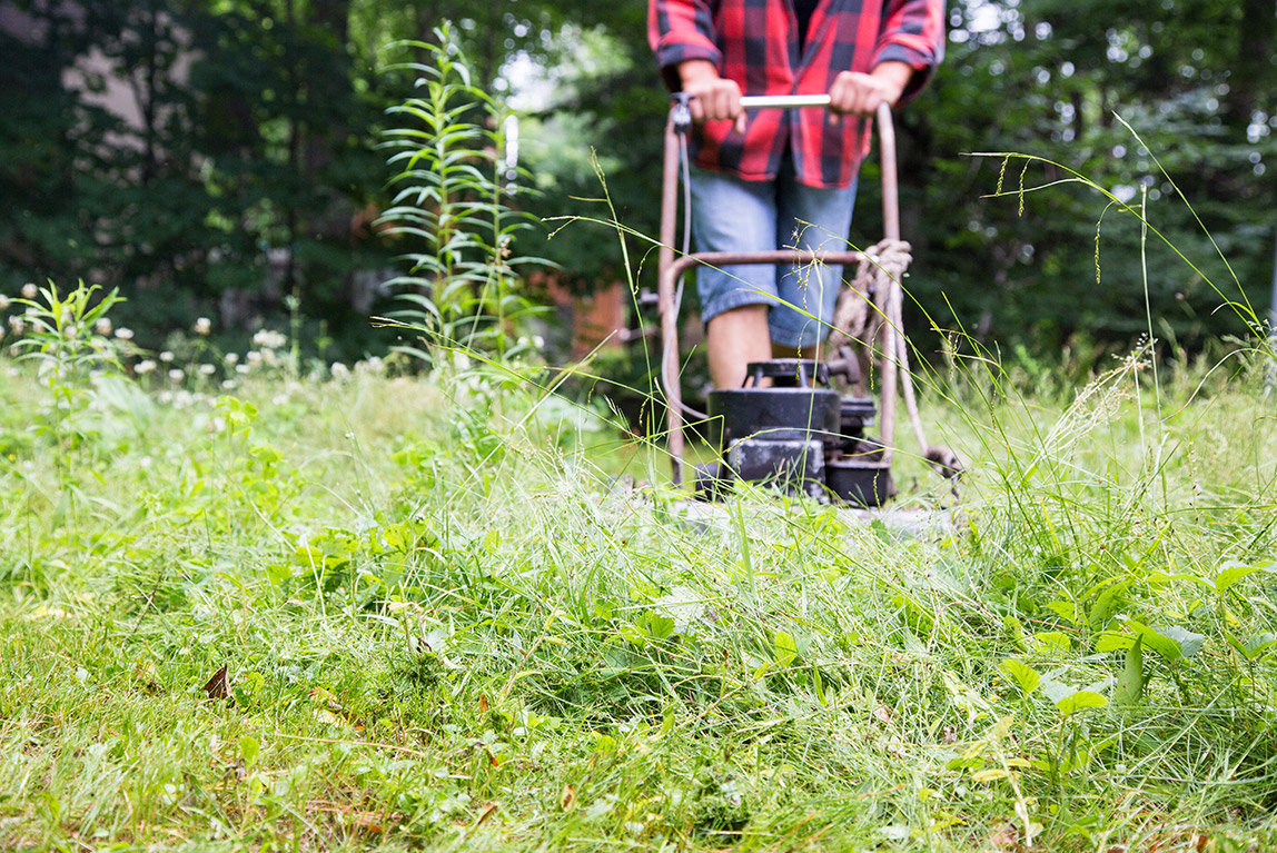 Man cutting weeds with a lawnmower.
